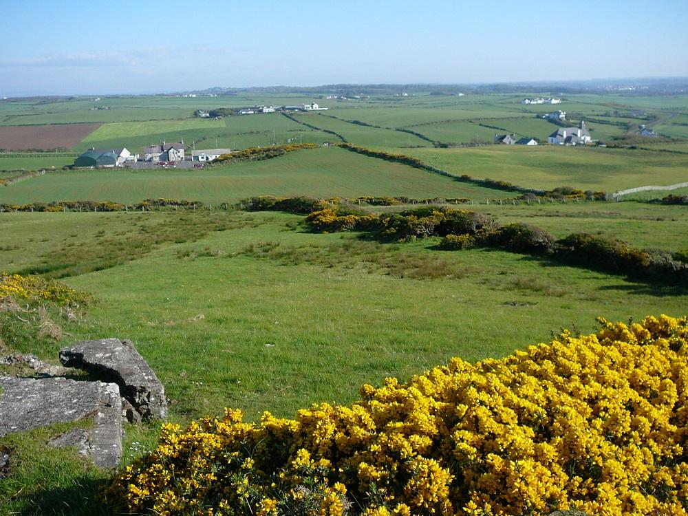 Irish Countryside near Giant's Causeway