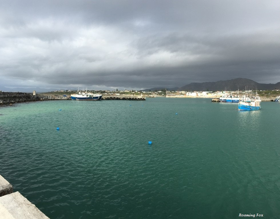 View from the new harbour in Gansbaai