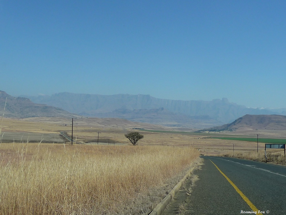 The  Amphitheatre,  a well known feature of the Northern  Drakensberg  in KwaZulu Natal