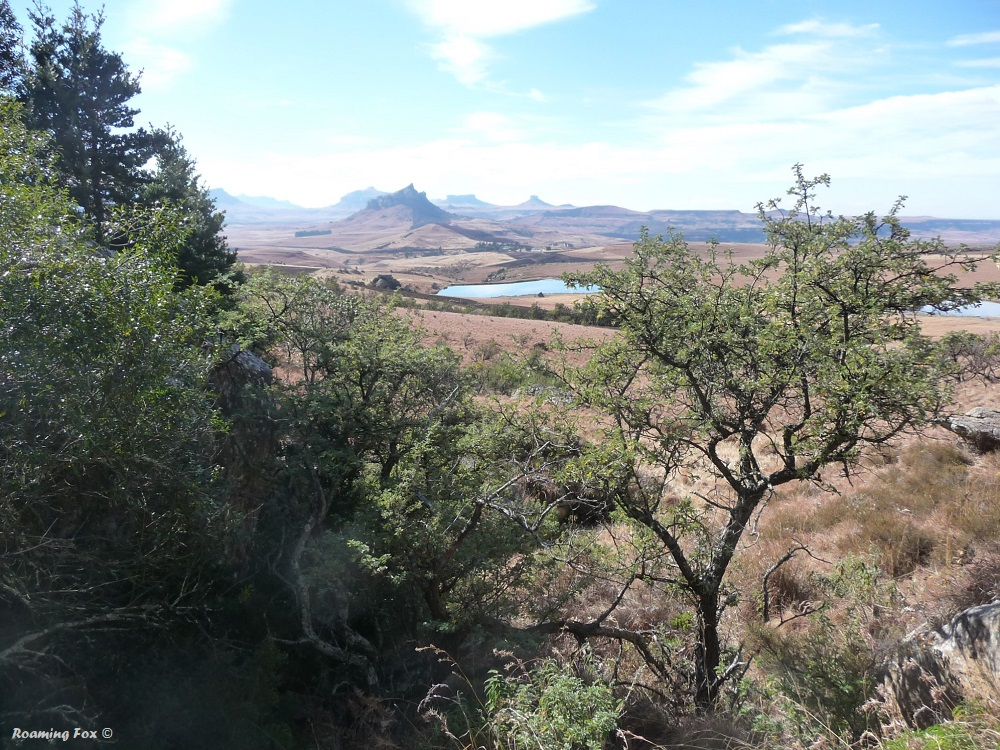 The escarpment at Oliviershoek Pass, dotted with interesting shaped hills