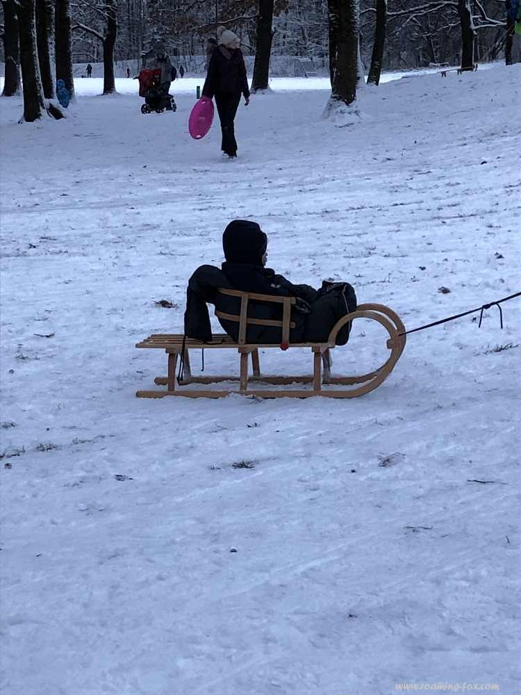 A child wrapped up warmly on the sleigh - too cute!