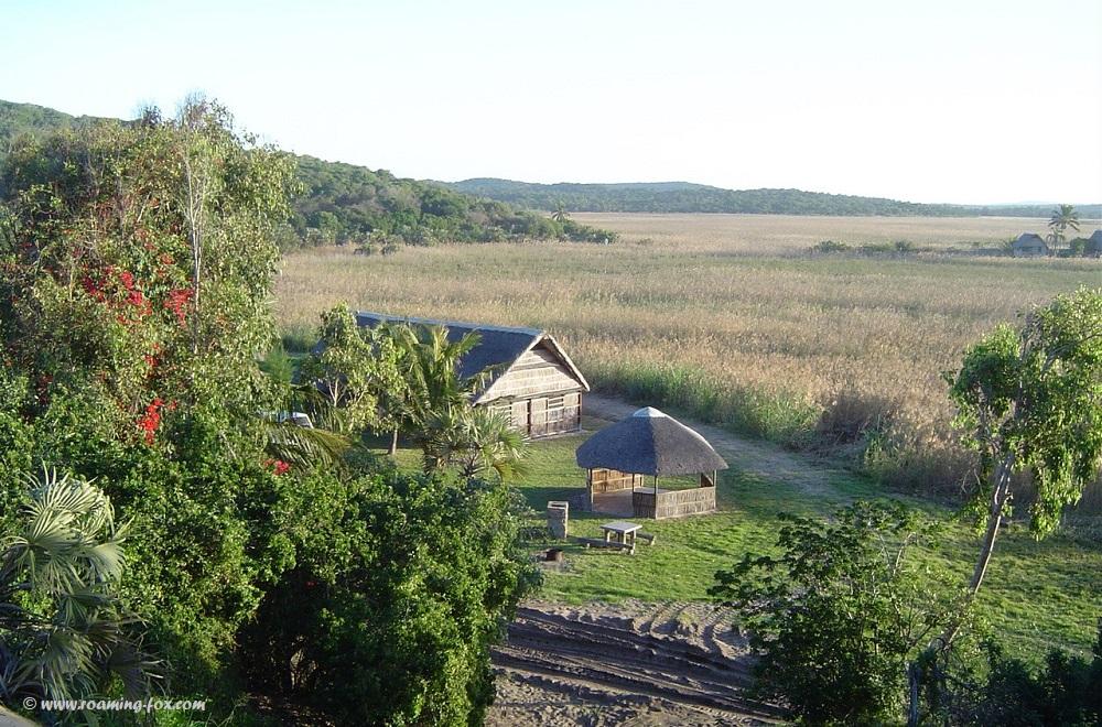 Marshland, mosquitoes paradise