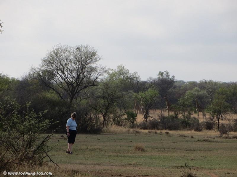 Walking in the bushveld
