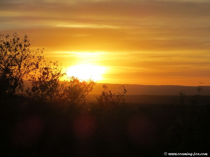 Sunset in the Waterberg