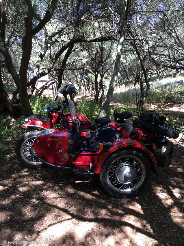 The Red Baron Ural sidecar motorbike earning a well deserved rest in the shade of the trees