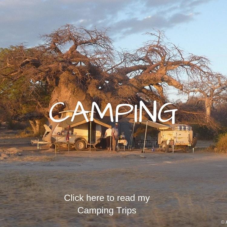 Roaming-Fox-Camping.jpg