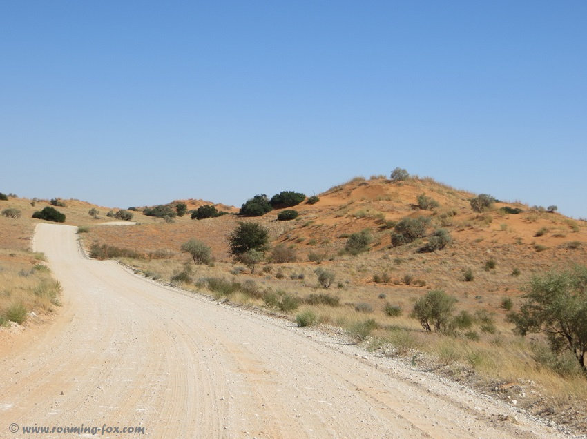 Dune road between Kij Kij and Auchterlonie
