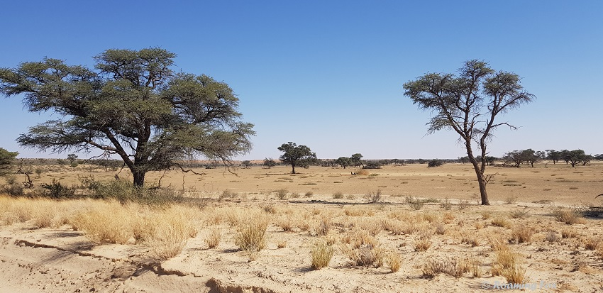Exceptionally dry in May 2019
