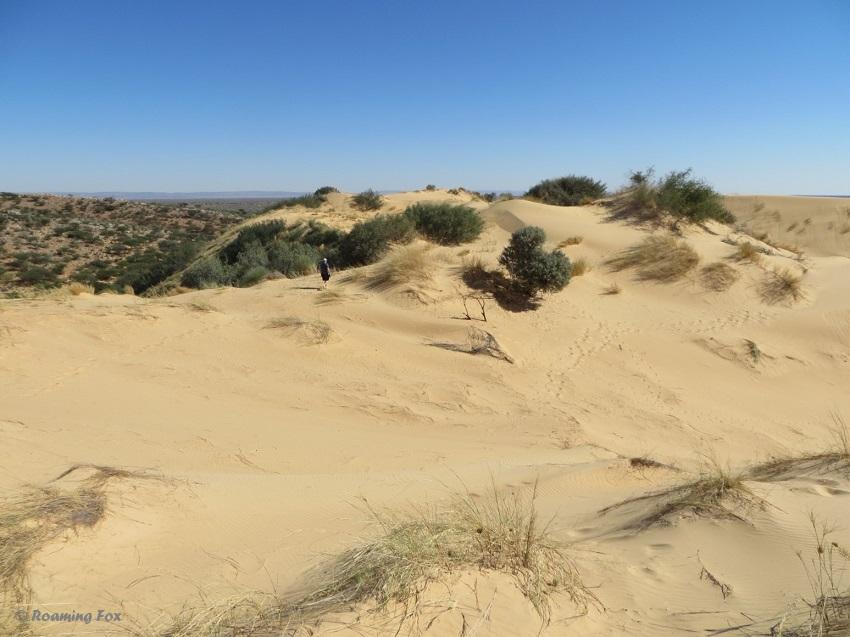 Witsand dunes