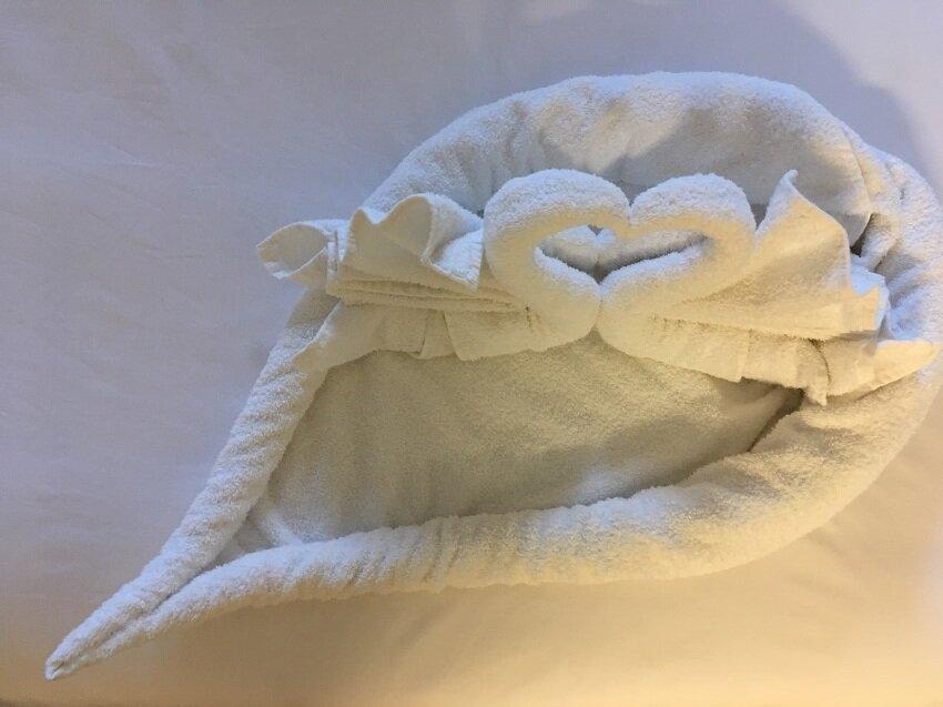 Munni of all Trades Towel art swans