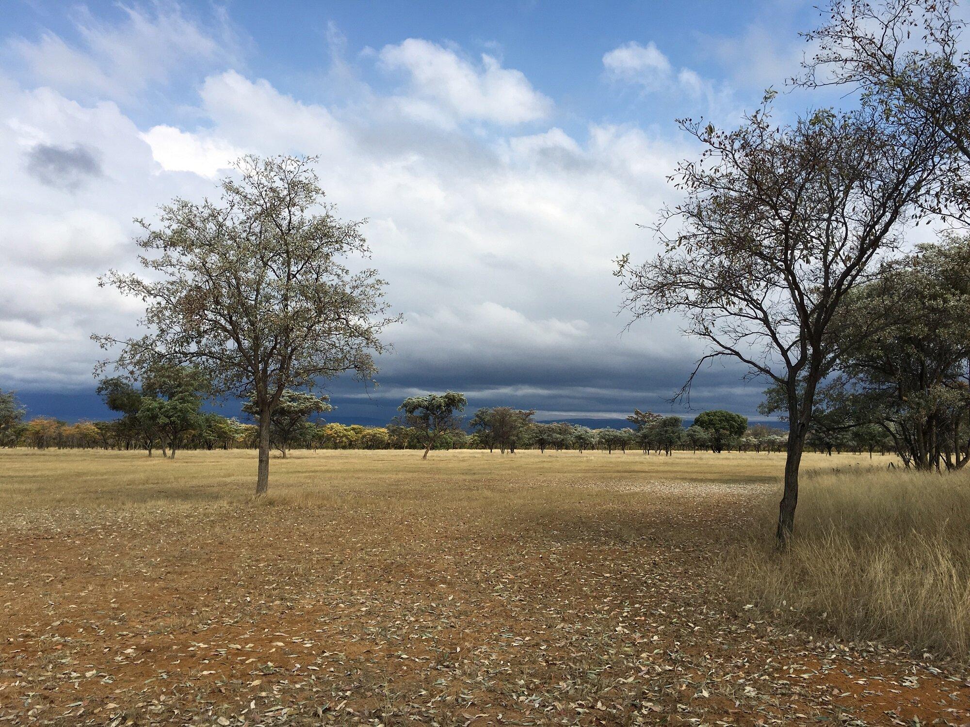 Clouds and plains Matamba Waterberg