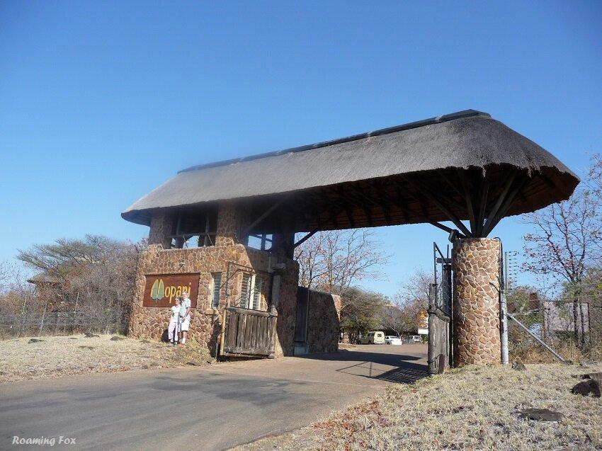 Mopani camp gate