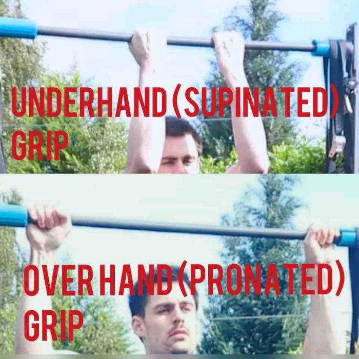 pull up vs chin up