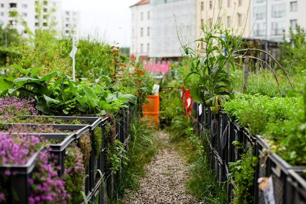 Berlin's Prinzessinnengarten.  (Source:  https://www.stilinberlin.de/2012/06/food-in-berlin-prinzessinnengarten.html )