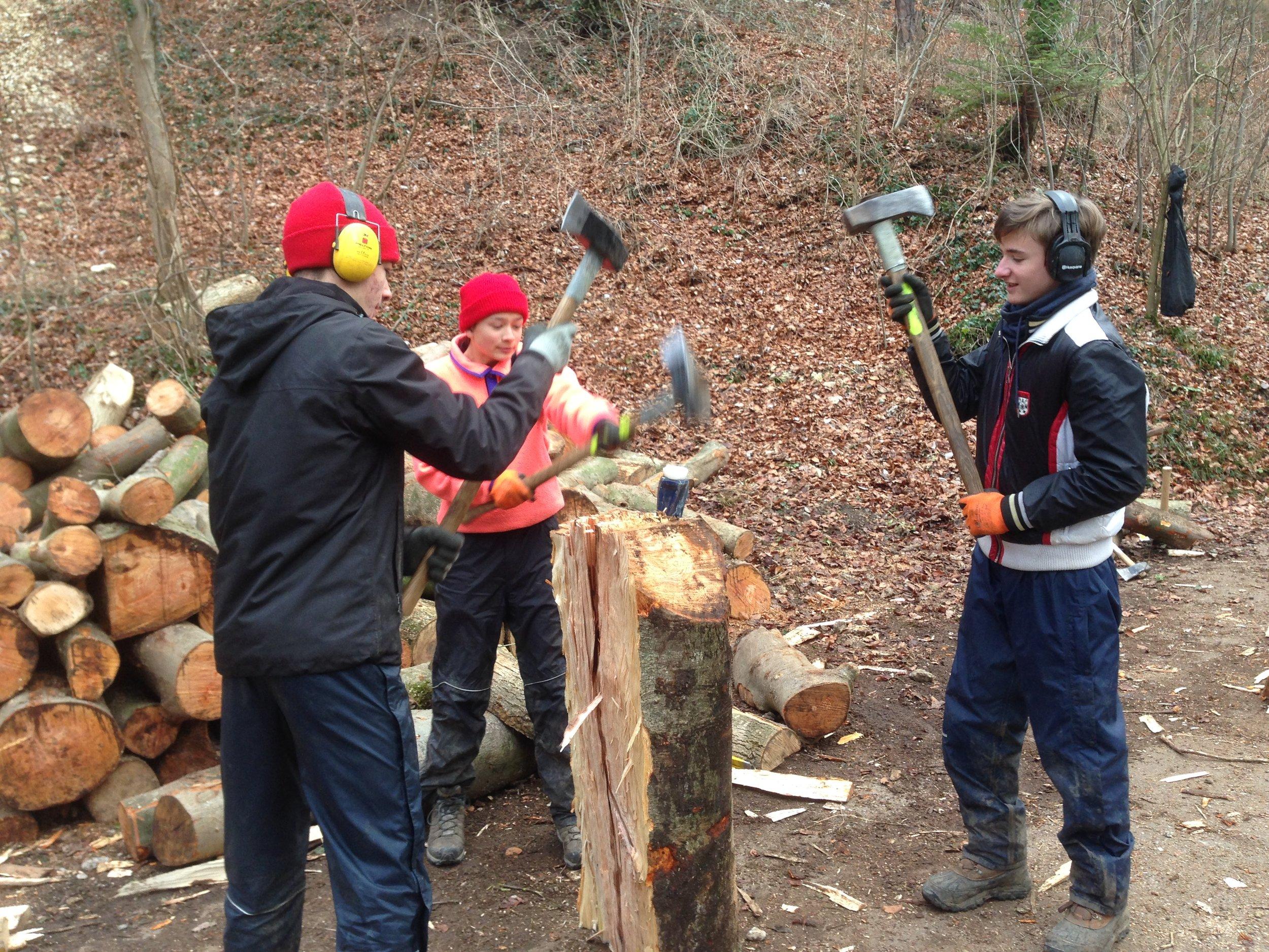 Das Forstpraktikum der 9. Klasse.
