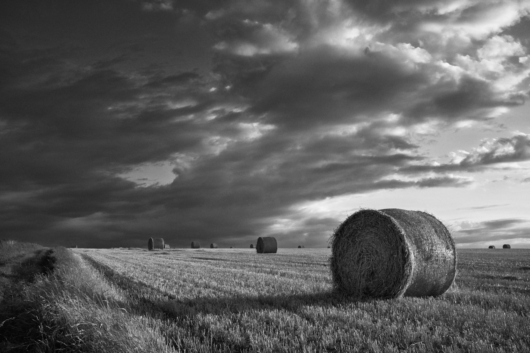Haybales in the evening sun.