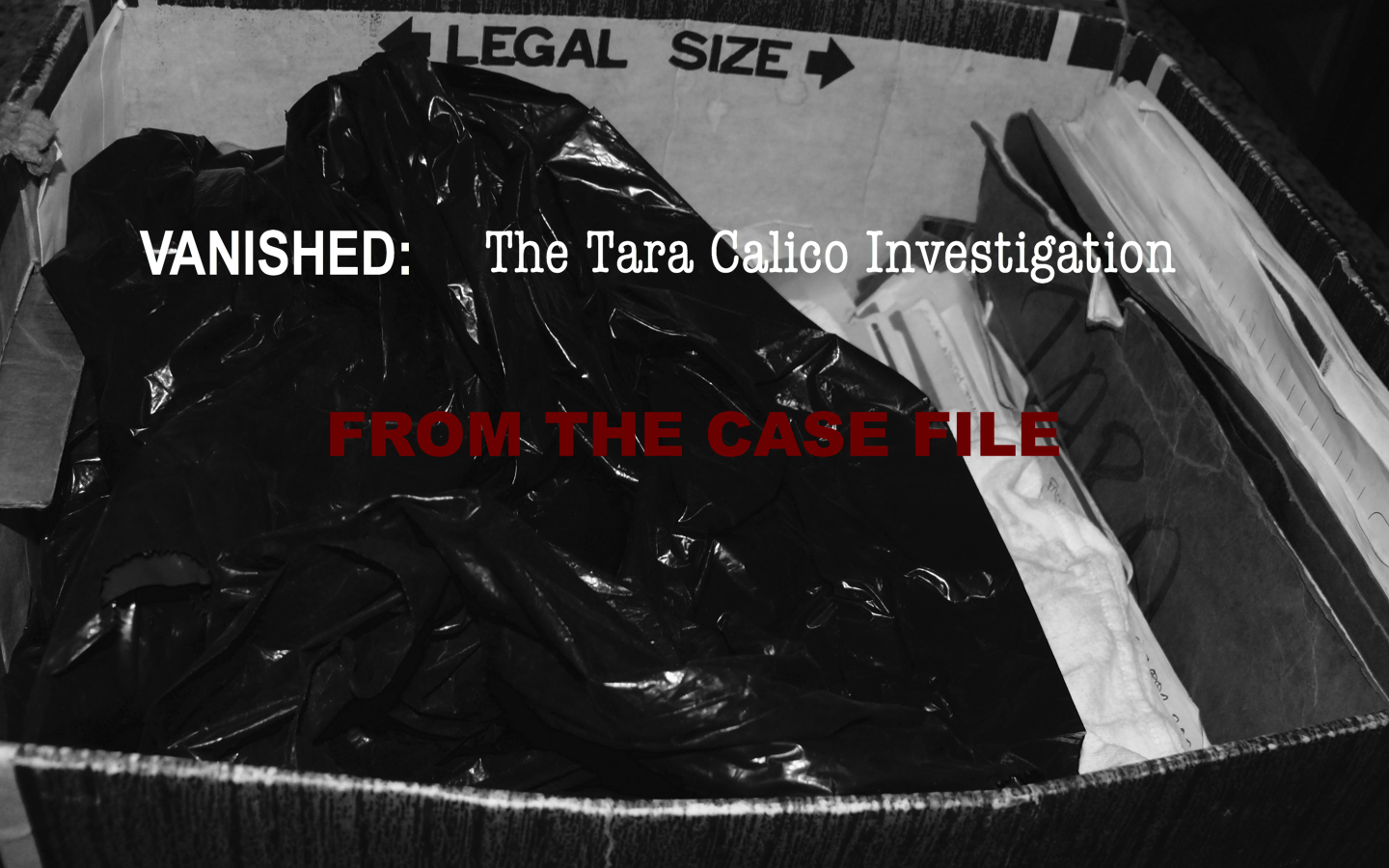 From the Case File Main 1.jpg