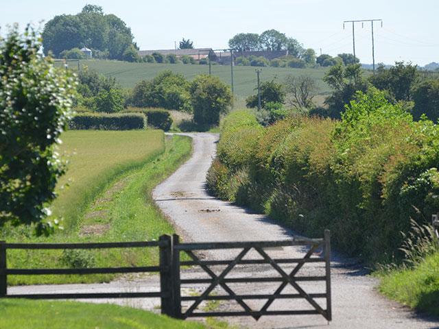 manor-farm-livery-teffont-magna-gallery-7.jpg