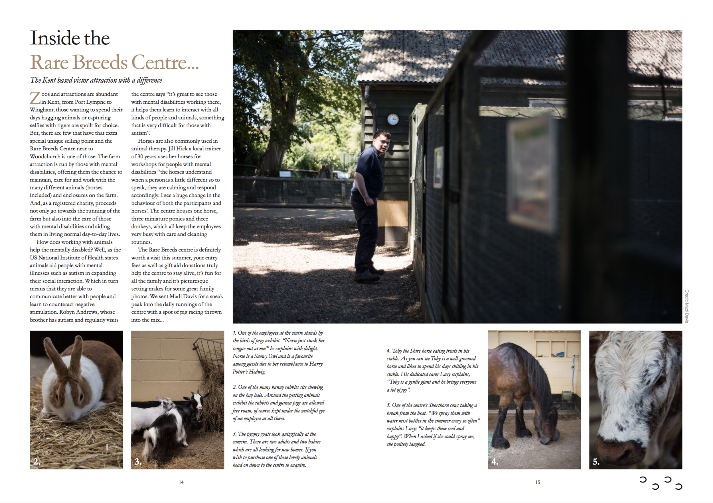 Excerpt from a photo essay on the Rare Breeds Centre
