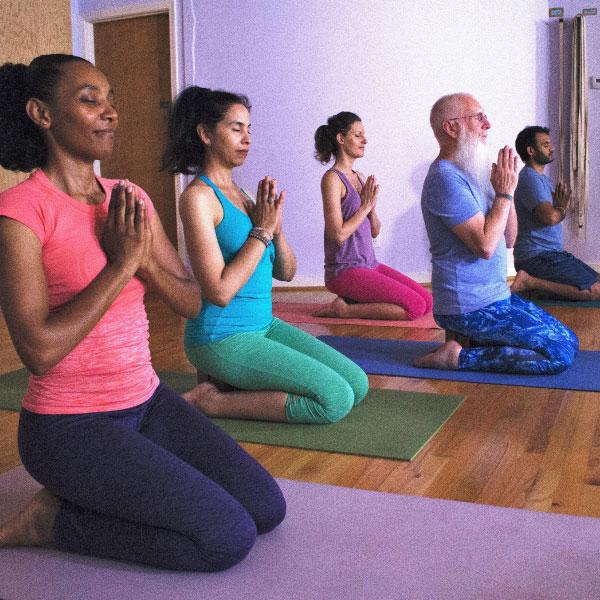 All Life is Yoga  $29/Month for 5 Classes #alllifeisyoga #teachertraining #dharmaproject   alllifeisyoga.com