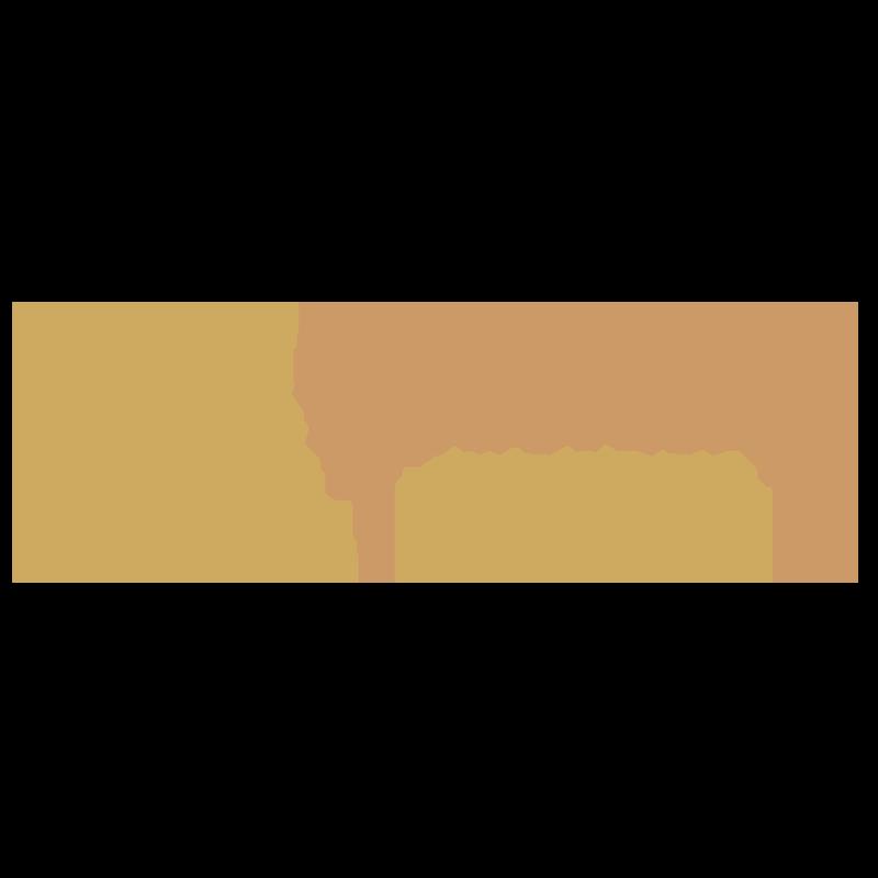 Vinisha Rumph | Starbound Observer  #cartomancy #akashicrecords #pastlives #energyhealing #reiki #psychic #healer #holistic #tarot #spiritual #medium #wellness   vinisharumph.com