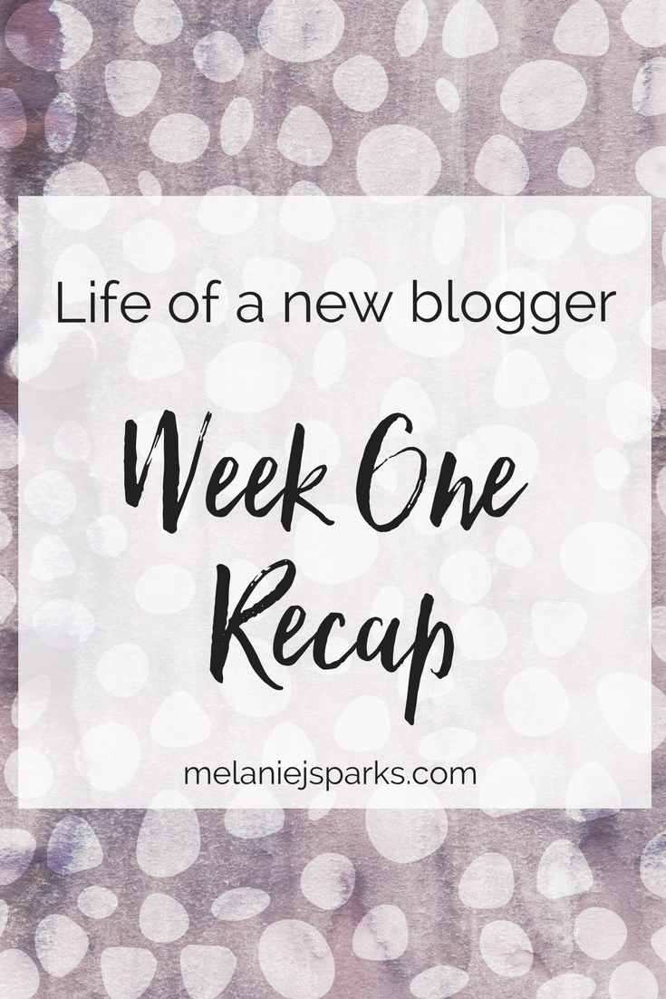 A week in the life of a new blogger, blogging expenses
