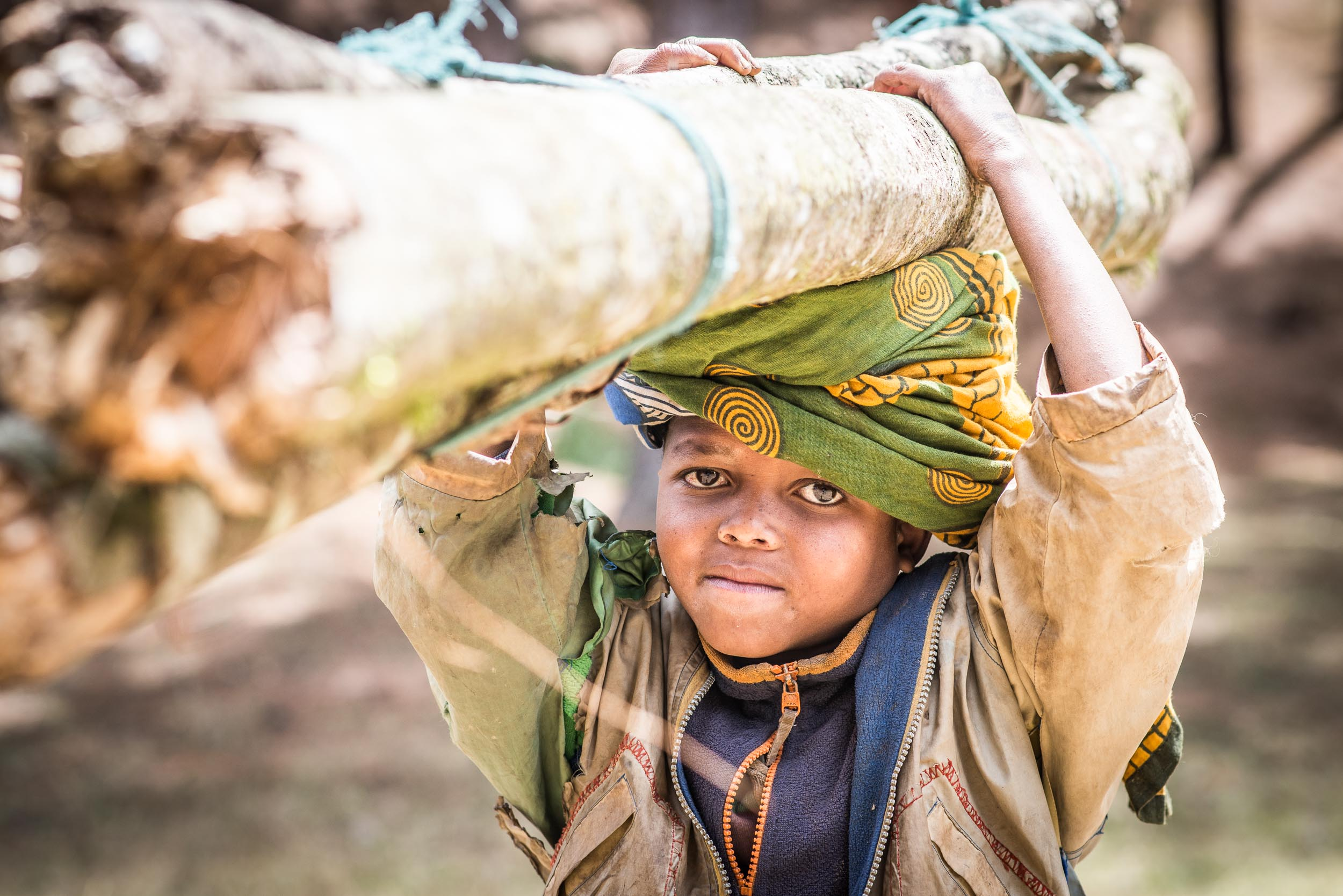 Tanzania - boy carrying tree - Travel - Photo credit Nicola Bailey.jpg