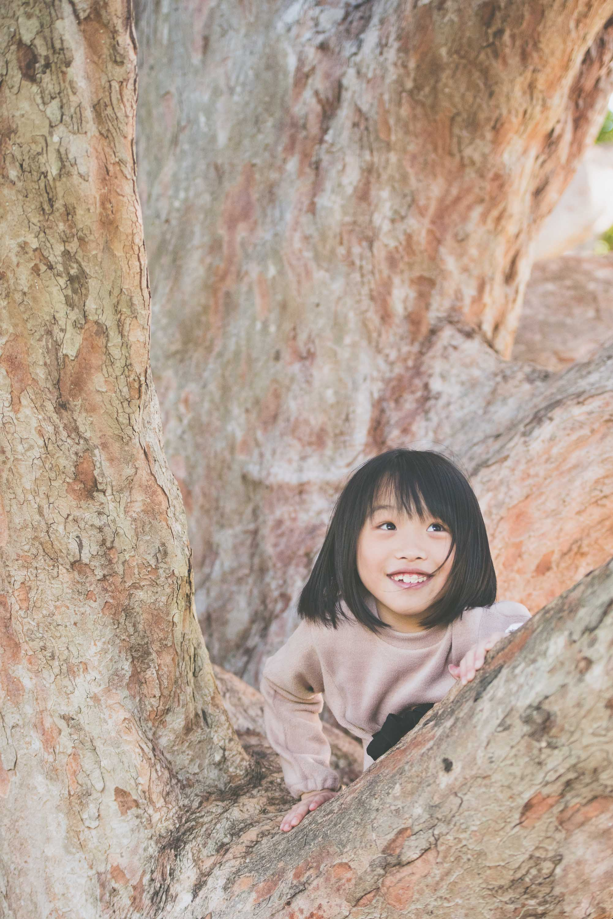 Climbing a tree - Photo credit Nicola Bailey.jpg