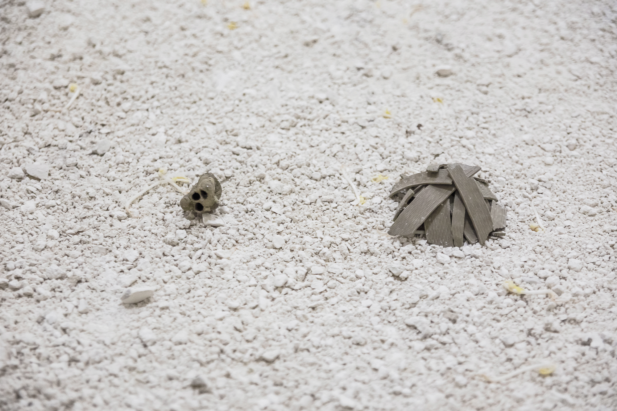 il chiaritoio,  mud wasp nest, 3D printed mud fragments, travertine dust, sprouts