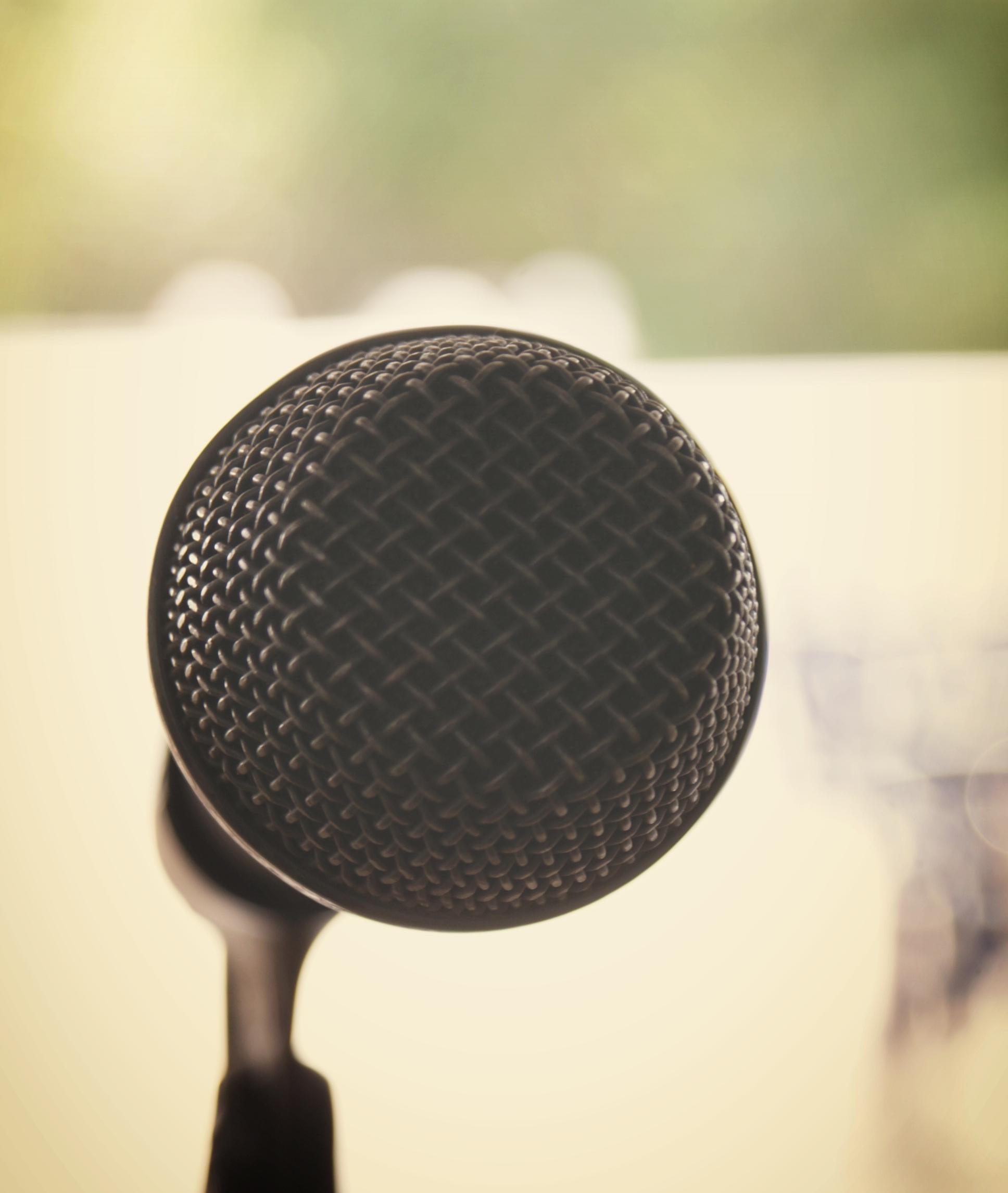 25491_Microphone.jpg