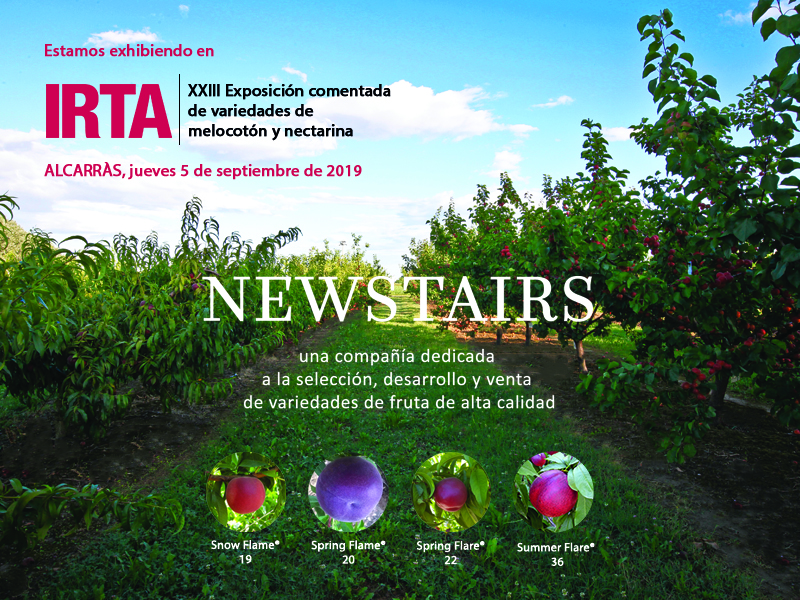 Newstairs will be attending the XXIII edition of the Peach and Nectarine exhibition in Alcarràs which is organised by IRTA