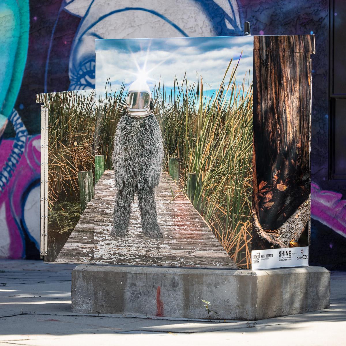 todd-bates-photoghraphy_shine-mural-festival_corner-canvas_St-pete.jpg