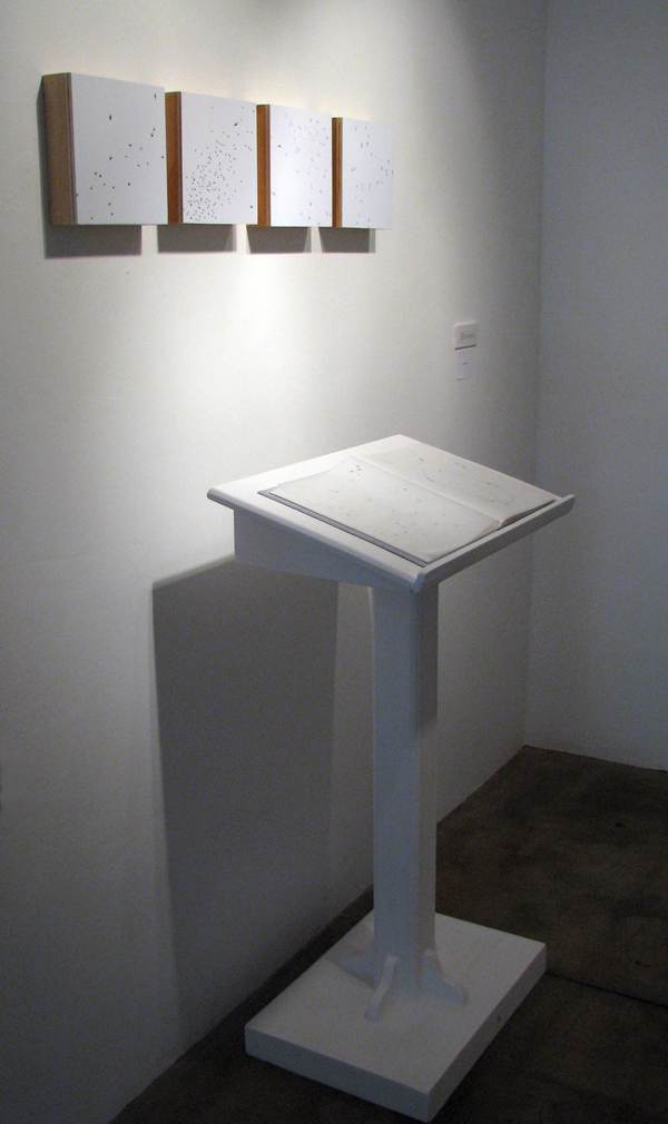 installation of  Primer  and  The Pace of Memory ,  The Desire for Meaning in Phenomena,  The Kitchenette, Phoenix, Arizona, 2007