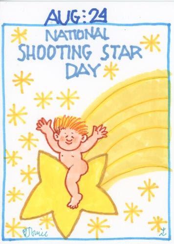 Shooting Star 2017