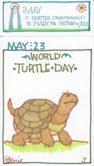 Turtle 2017