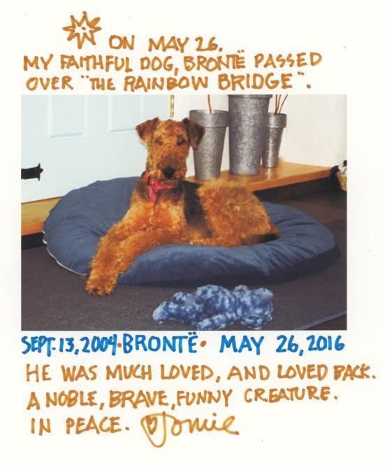 Bronte RIP 2016