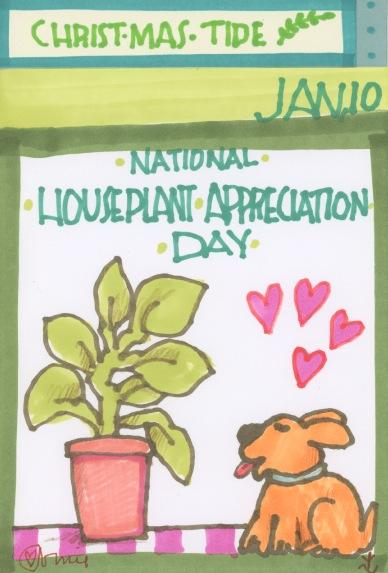 Houseplant Appreciation 2017