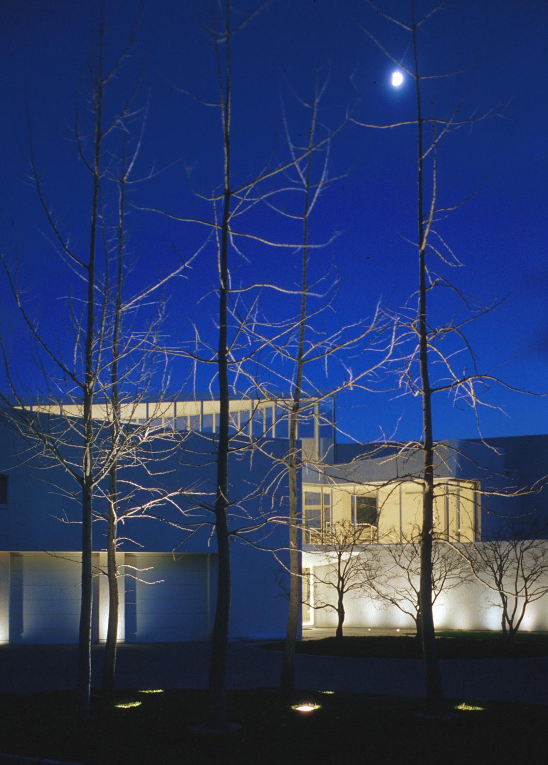 HouseonCoast-night w trees.jpg
