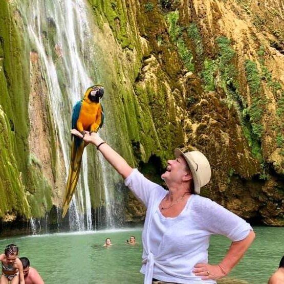 waterfallbird.JPG