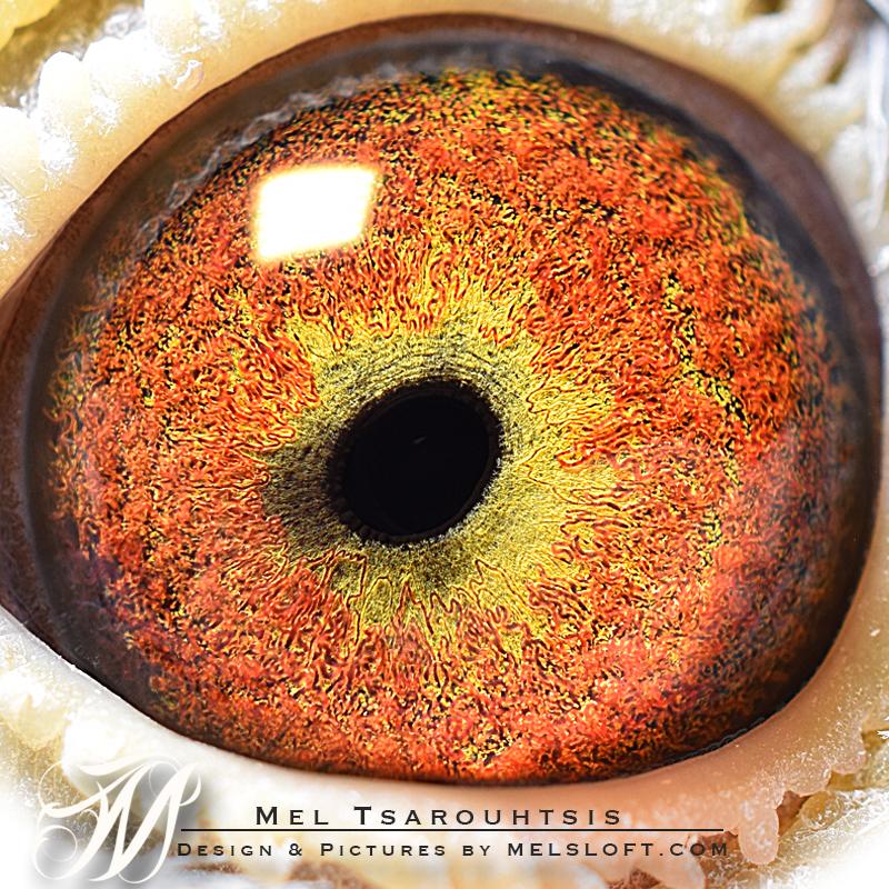eye of LEPS TITANIUM.jpg