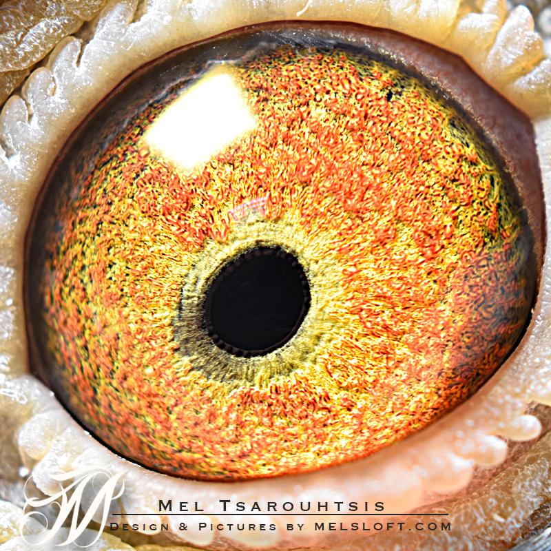 eye of mtfl 61.jpg