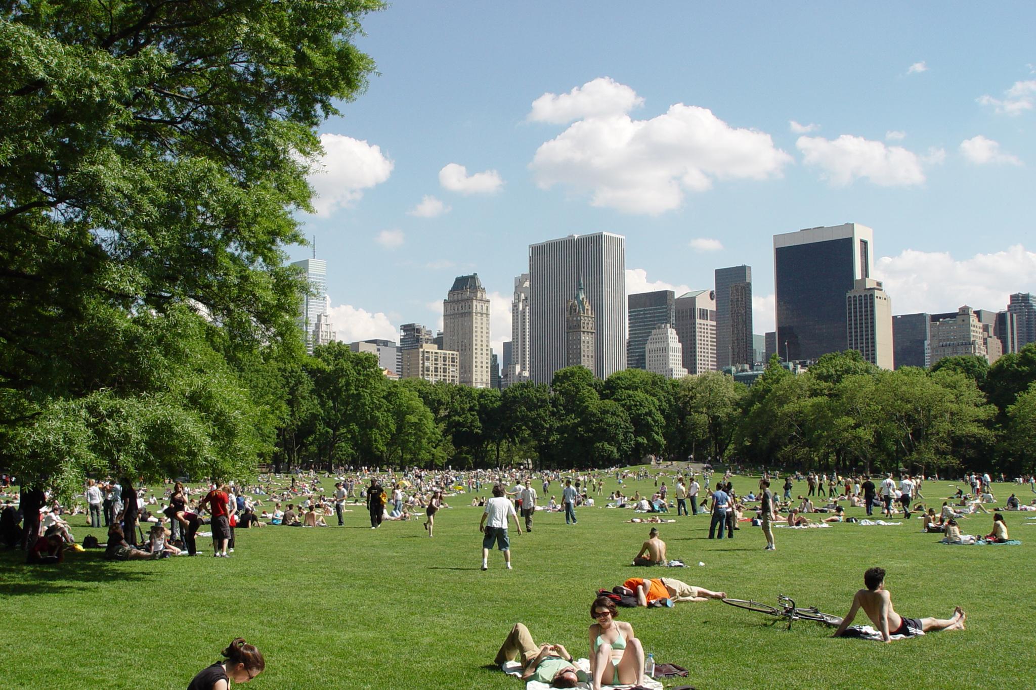 NYC Parks - Engineering.jpg