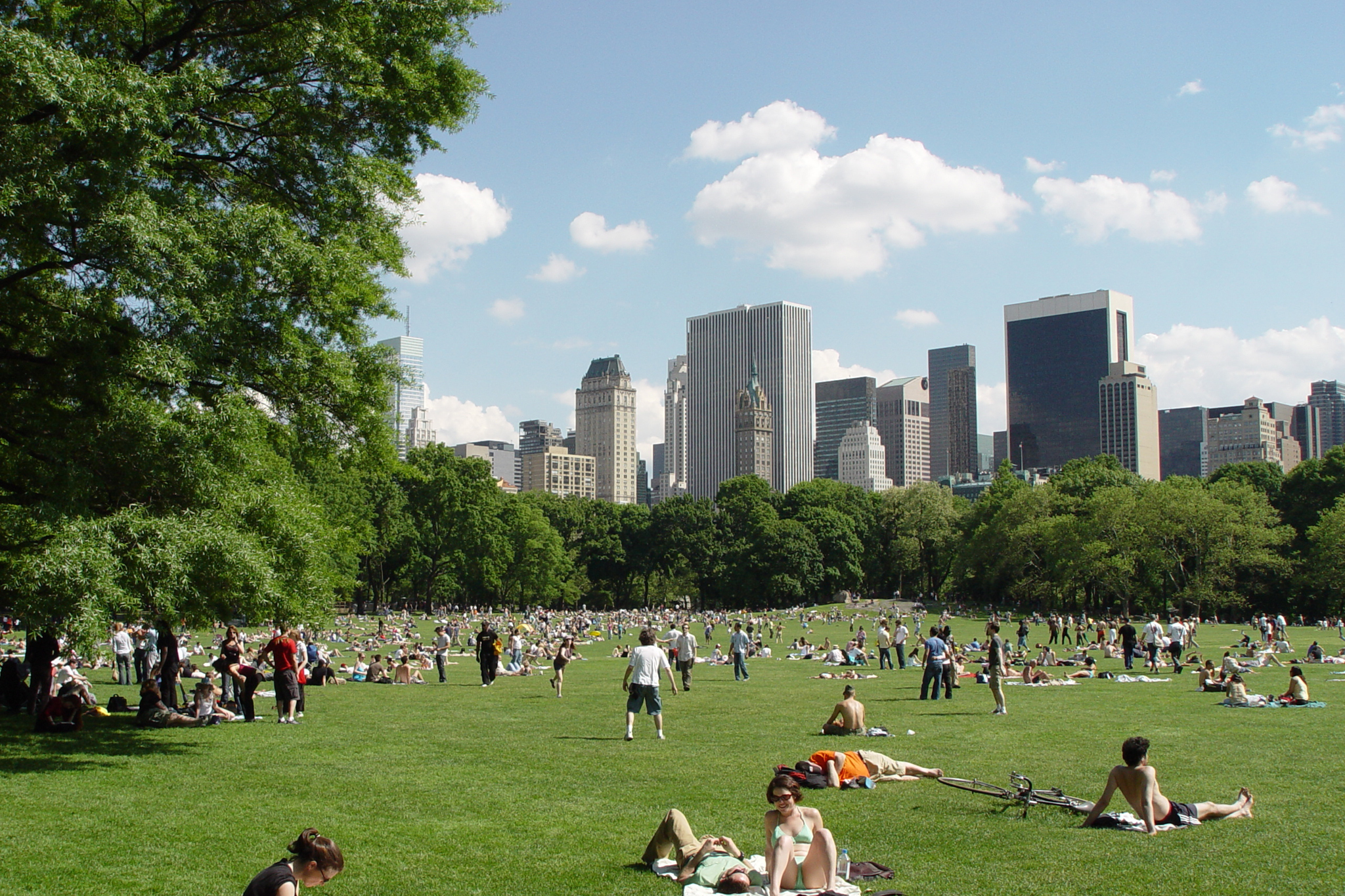 NYC Parks – Term Contract for Engineering Services
