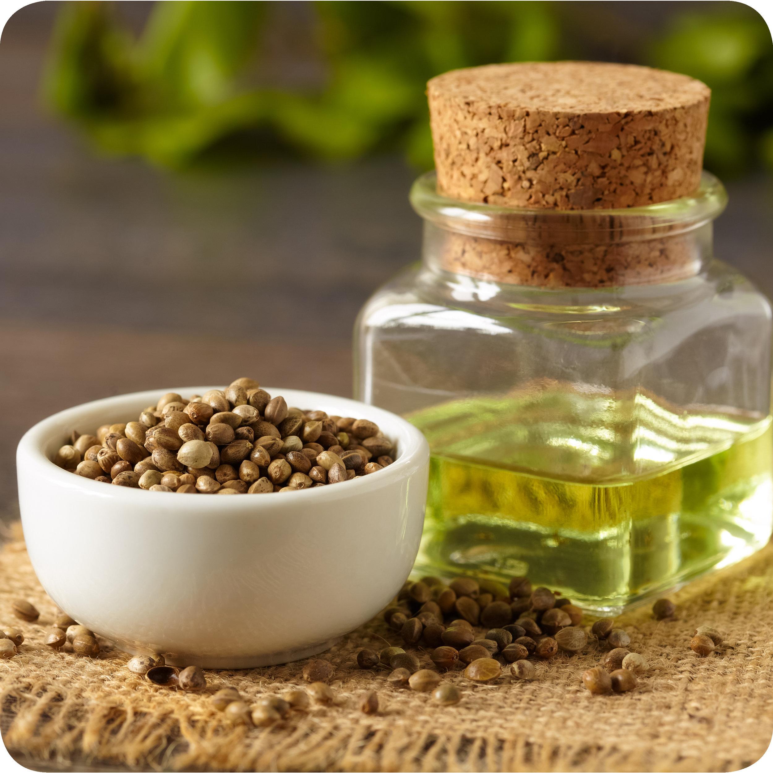 Dried hemp seeds and hemp seed oil.