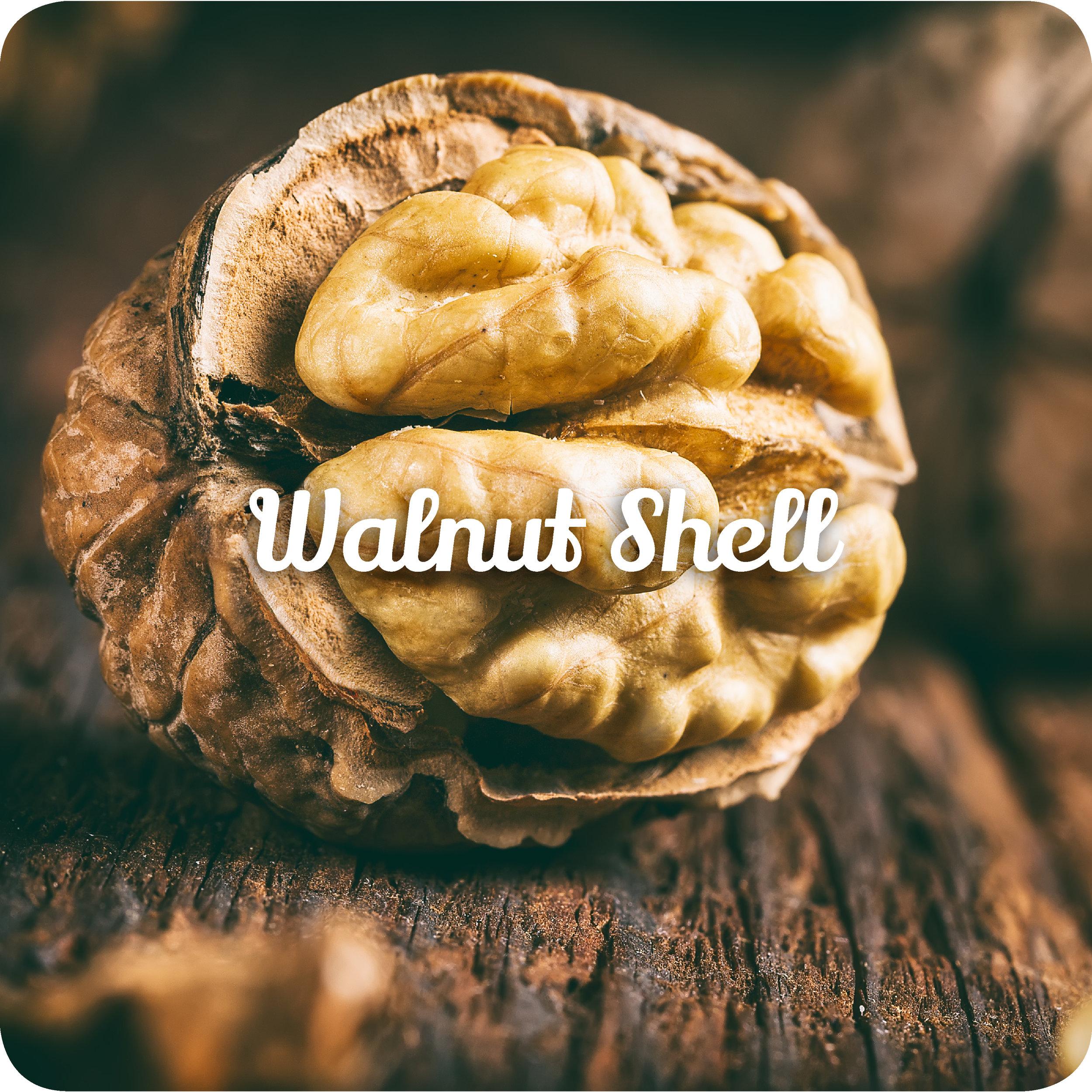 walnutshell.jpg