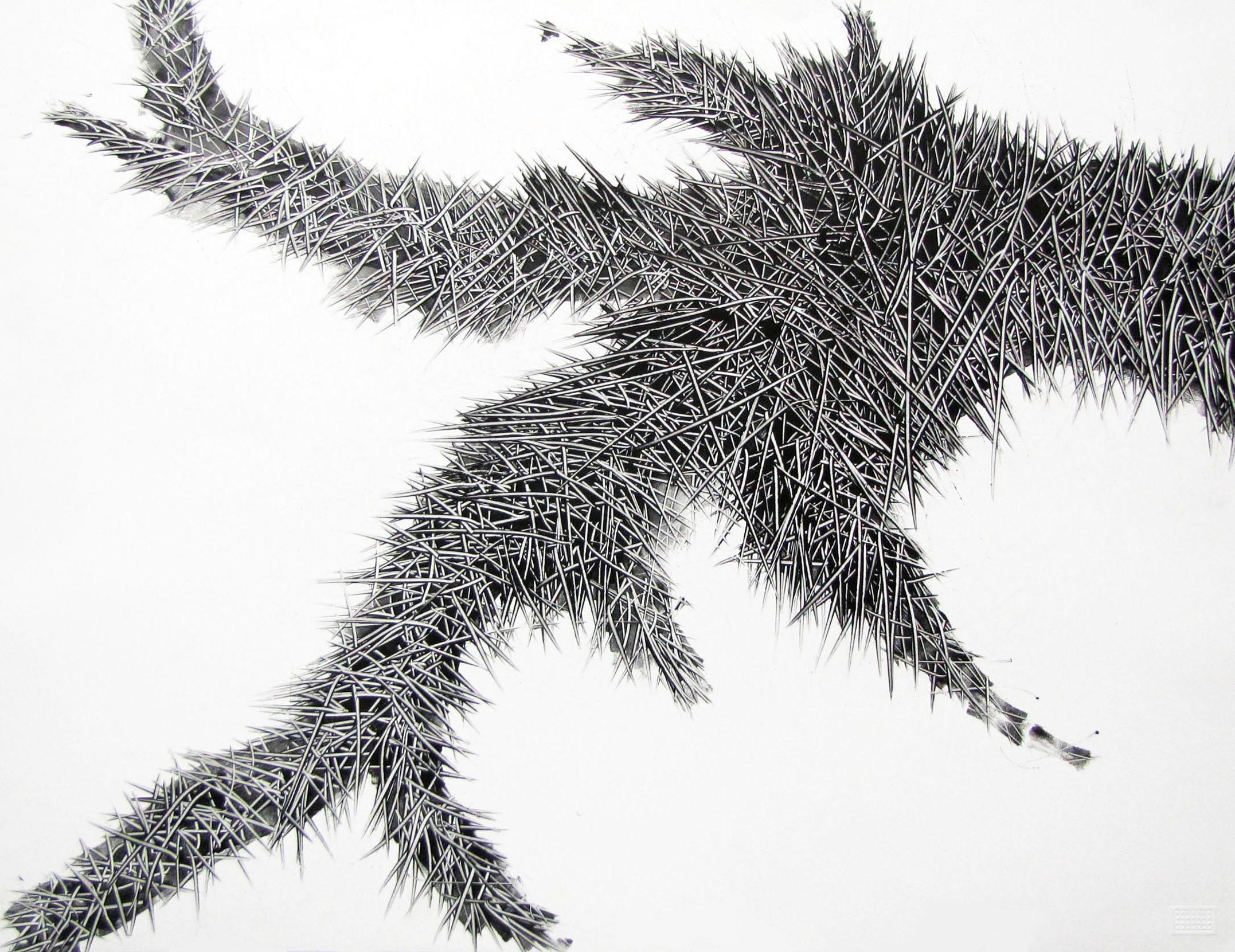 Branch- George Wilson.jpg
