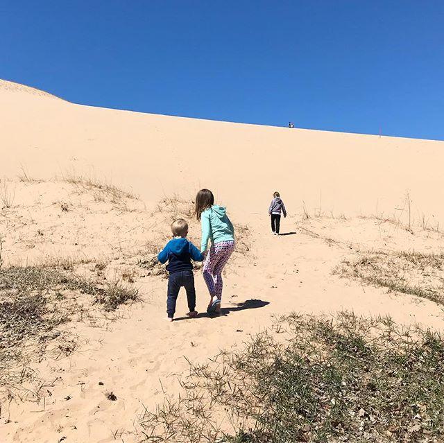 Dune days 🌅
