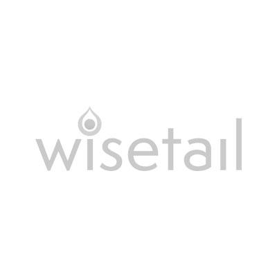 wisetail.jpg
