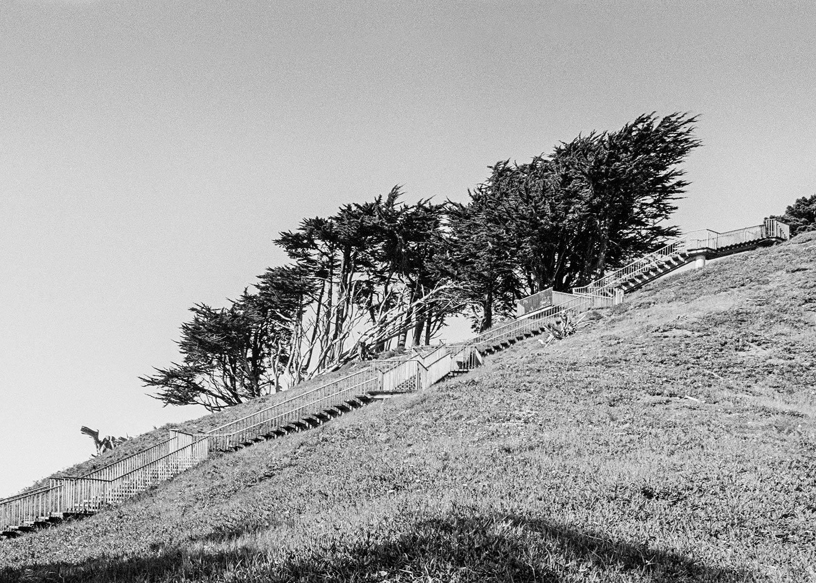 Golden Gate Heights, Study 3