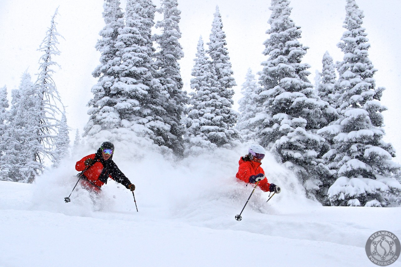 STEAMBOAT POWDER CATS